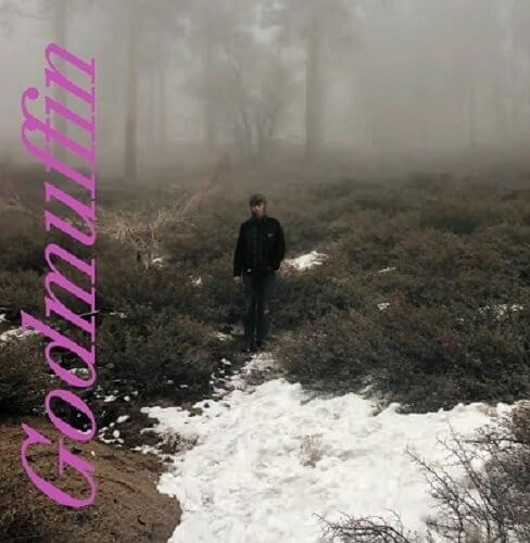 Mike Viola - Godmuffin album cover